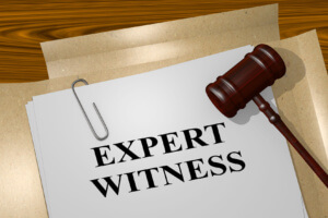 expert witness file